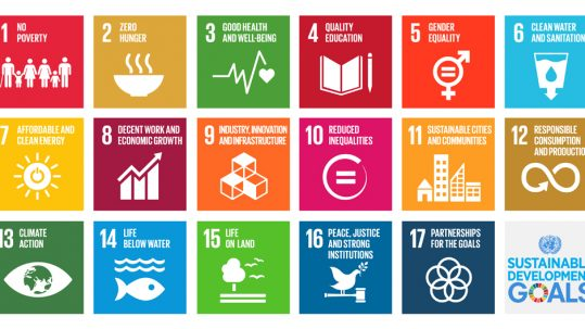 Artificial Intelligence and Sustainable Development Goals